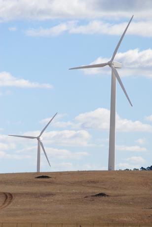 Zilpah tart wind farm